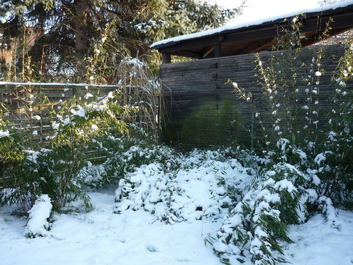 2009-01-Schnee_01.jpg