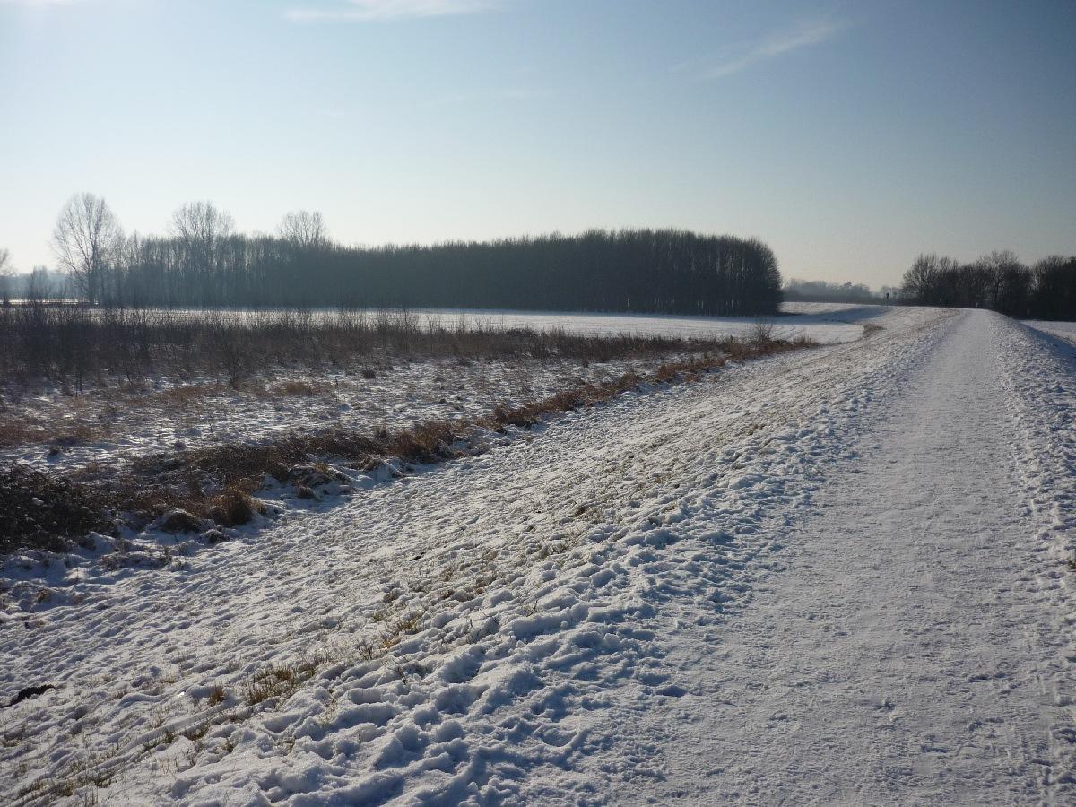 2009-01-Schnee_05.jpg