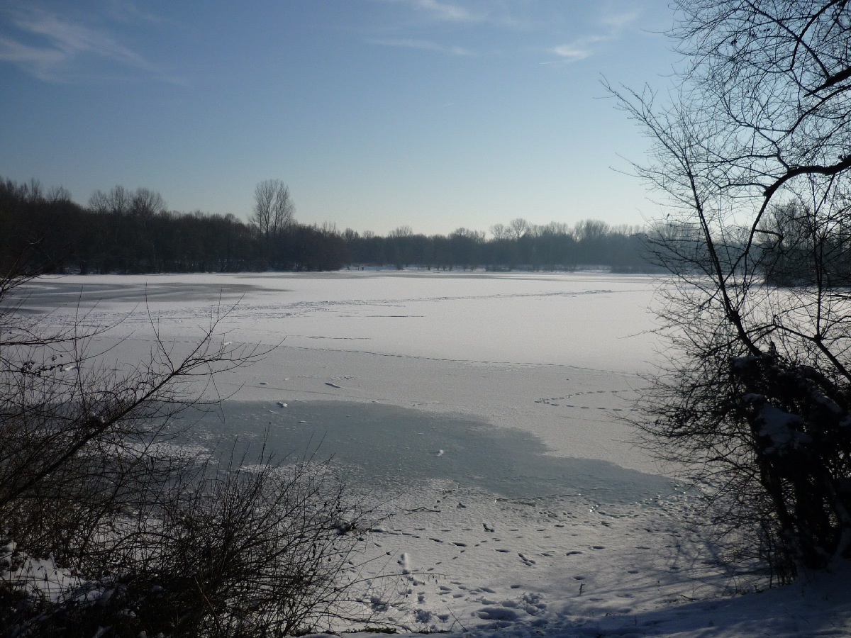 2009-01-Schnee_08.jpg