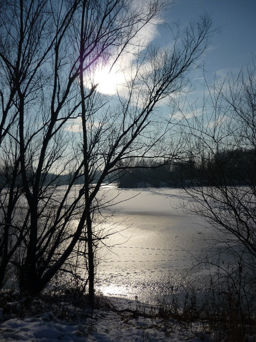 2009-01-Schnee_11.jpg