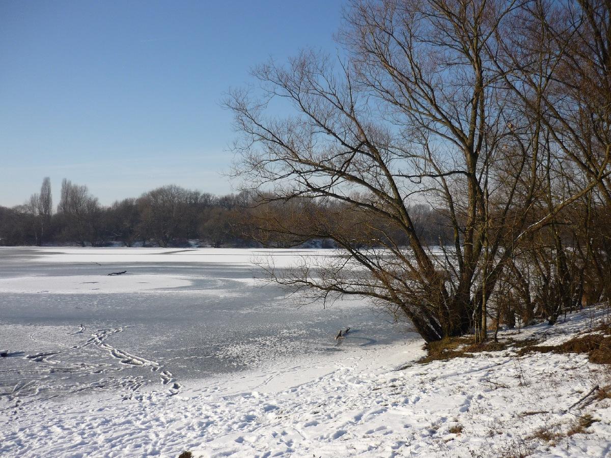 2009-01-Schnee_13.jpg