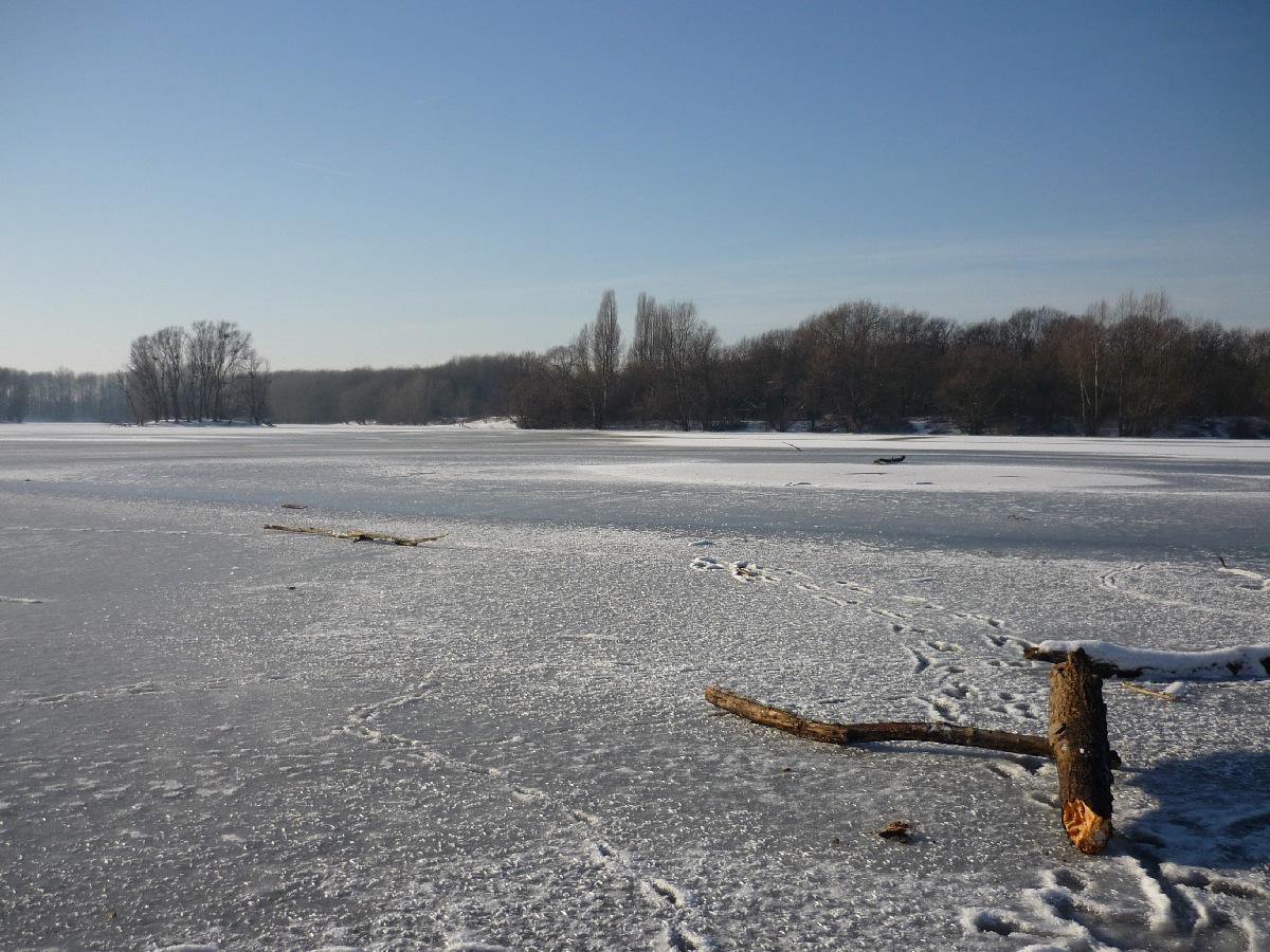 2009-01-Schnee_14.jpg