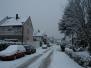 Winterbilder 2008/2009